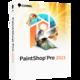 Visuel PaintShop Pro 2021