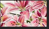Screenshot 7 Corel Painter 2019